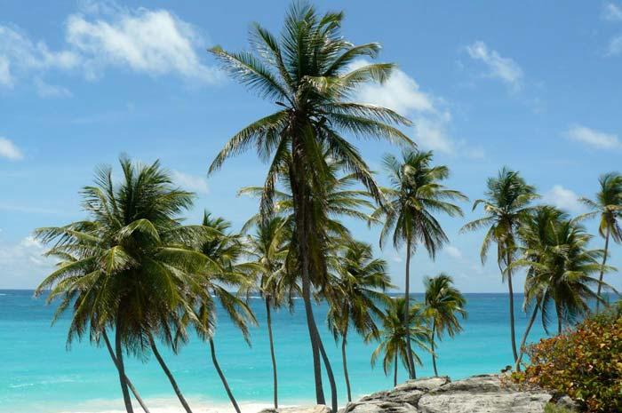 Kitereisen Barbados Karibik