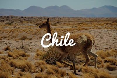 Chile Kitespot Area - Kitesurfen und Kitereisen