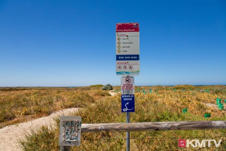 Giftige Schlangen - Perth Kitereisen und Kitesurfen
