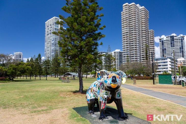 Koala - Surfers Paradise Kitereisen & Kitesurfen