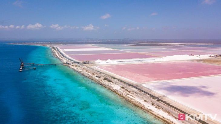 Salinen - Bonaire Kitereisen & Kitesurfen